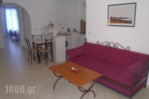 Dafnis Studios_best deals_Hotel_Cyclades Islands_Koufonisia_Koufonisi Chora