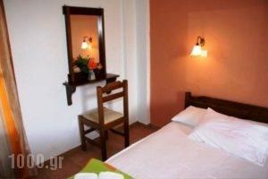 Triantafyllou Maria Rooms_lowest prices_in_Room_Sporades Islands_Skopelos_Skopelos Chora