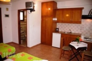 Triantafyllou Maria Rooms_holidays_in_Room_Sporades Islands_Skopelos_Skopelos Chora