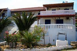 Rania Studios_best prices_in_Apartment_Cyclades Islands_Andros_Ormos