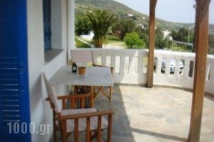 Rania Studios_lowest prices_in_Apartment_Cyclades Islands_Andros_Ormos