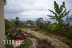 Irida maisonettes in Raches , Ikaria, Aegean Islands