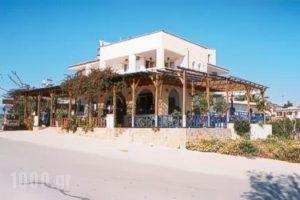 Aleksis Zorbas_holidays_in_Apartment_Crete_Heraklion_Pitsidia