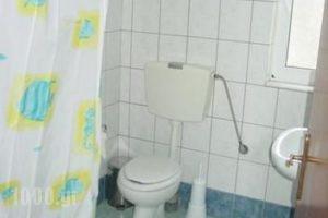 Aleksis Zorbas_accommodation_in_Apartment_Crete_Heraklion_Pitsidia