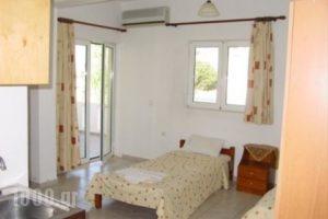 Aleksis Zorbas_best prices_in_Apartment_Crete_Heraklion_Pitsidia