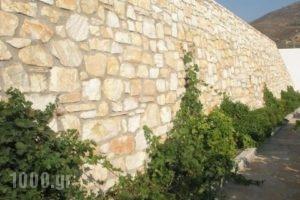 Abrami Traditional Villas - Kritikos_best prices_in_Villa_Cyclades Islands_Naxos_Naxos Rest Areas