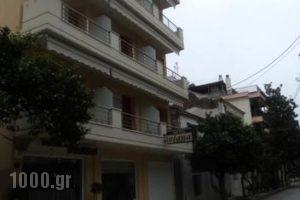 Viana_holidays_in_Apartment_Central Greece_Evia_Edipsos