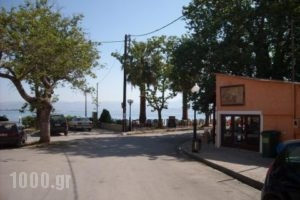 Lerna Rooms_accommodation_in_Apartment_Peloponesse_Argolida_Kiveri