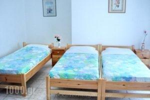 Katerina Yalos_holidays_in_Hotel_Cyclades Islands_Ios_Ios Chora