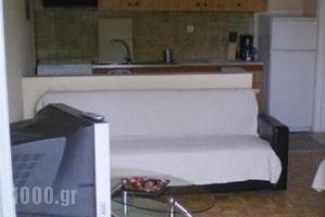 Luca_accommodation_in_Apartment_Macedonia_Kavala_Palio