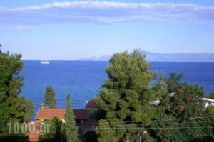 Luca_best prices_in_Apartment_Macedonia_Kavala_Palio