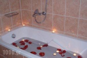 Irida Hotel_accommodation_in_Hotel_Ionian Islands_Lefkada_Lefkada's t Areas
