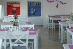 Hotel Gorgona_lowest prices_in_Hotel_Cyclades Islands_Mykonos_Mykonos ora