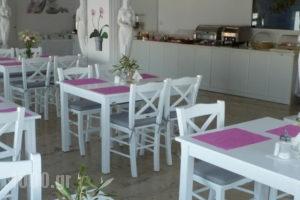 Hotel Gorgona_best deals_Hotel_Cyclades Islands_Mykonos_Mykonos ora