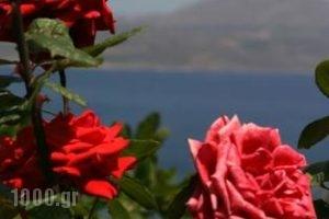 Villa Irini_travel_packages_in_Crete_Chania_Almyrida
