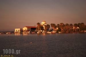 Eleftheria's Studios_best prices_in_Room_Piraeus Islands - Trizonia_Trizonia_Trizonia Rest Areas