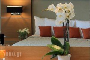 Elektra Hotel & Spa_accommodation_in_Hotel_Thessaly_Magnesia_Pilio Area