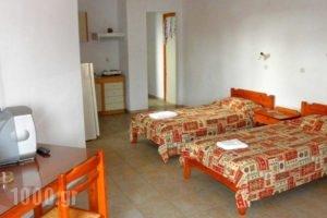 Anthemis_holidays_in_Hotel_Crete_Chania_Daratsos