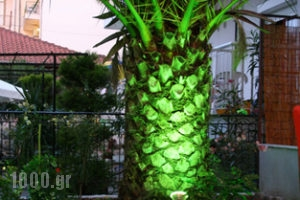 Antigoni Apartments_best deals_Apartment_Macedonia_Thessaloniki_Asprovalta