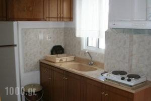 Antigoni Apartments_best prices_in_Apartment_Macedonia_Thessaloniki_Asprovalta