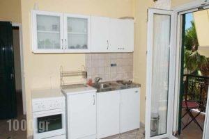 Amfitrion Apartments_lowest prices_in_Apartment_Peloponesse_Lakonia_Gythio