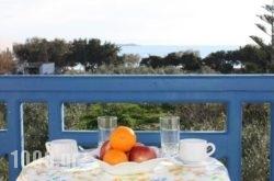 Mina'S Studios In Naxos Island in Agia Anna, Naxos, Cyclades Islands