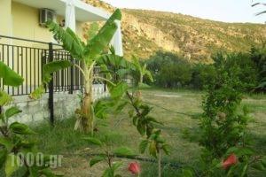 Pantelios Village_best prices_in_Hotel_Ionian Islands_Kefalonia_Vlachata