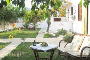 Thalassia_travel_packages_in_Sporades Islands_Skyros_Kalamitsa