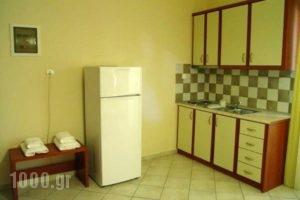 Pefki Studios_best deals_Apartment_Central Greece_Evia_Pefki