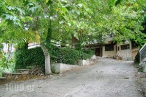 Dirfis_accommodation_in_Hotel_Central Greece_Evia_Steni