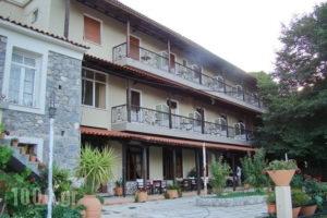 Dirfis_holidays_in_Hotel_Central Greece_Evia_Steni