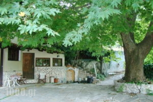 Dirfis_best deals_Hotel_Central Greece_Evia_Steni