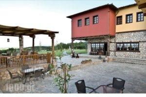 Estate Kalaitzis_best deals_Hotel_Macedonia_Imathia_Vergina