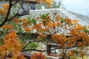 Gardenia Studios_lowest prices_in_Hotel_Thessaly_Magnesia_Mouresi