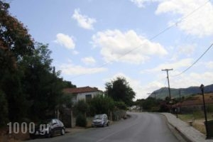 France_best prices_in_Hotel_Thessaly_Trikala_Kastraki
