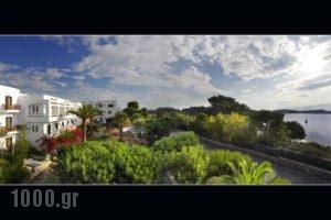 Lato Hotel_best deals_Hotel_Crete_Lasithi_Ammoudara