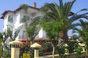 Cleopatra_best deals_Hotel_Macedonia_Halkidiki_Haniotis - Chaniotis