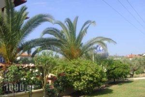 Cleopatra_holidays_in_Hotel_Macedonia_Halkidiki_Haniotis - Chaniotis