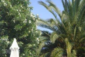 Cleopatra_lowest prices_in_Hotel_Macedonia_Halkidiki_Haniotis - Chaniotis