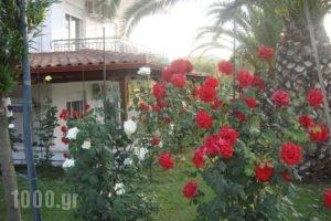 Cleopatra_accommodation_in_Hotel_Macedonia_Halkidiki_Haniotis - Chaniotis