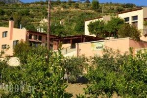Nana Apartments_best deals_Apartment_Crete_Heraklion_Zaros