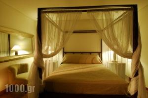 Enodia_best prices_in_Hotel_Ionian Islands_Lefkada_Vasiliki