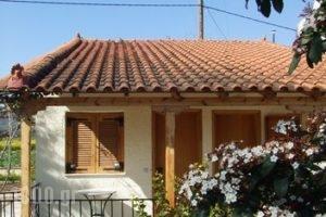 Studio Candia_lowest prices_in_Hotel_Peloponesse_Argolida_Kandia