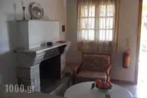 Studio Candia_best prices_in_Hotel_Peloponesse_Argolida_Kandia