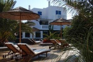 Iro's Boutique_best deals_Apartment_Cyclades Islands_Mykonos_Kalafatis