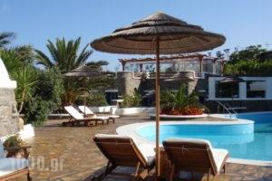 Iro's Boutique_holidays_in_Apartment_Cyclades Islands_Mykonos_Kalafatis