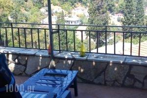 Giannatos' Studios_accommodation_in_Hotel_Ionian Islands_Kefalonia_Vlachata