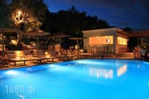La Casa Di Nonna_best prices_in_Hotel_Ionian Islands_Lefkada_Lefkada Chora