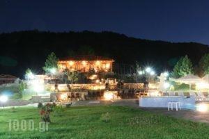 Pindos Palace_accommodation_in_Hotel_Macedonia_Grevena_Lavdas