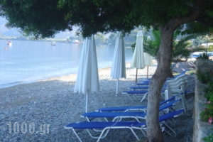 Georgiou Rooms & Apartments_best prices_in_Apartment_Central Greece_Evia_Rovies